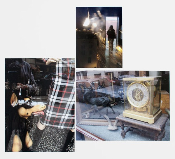 MagMag-Summer14-Feature-Zvonar-dog_and_tartan_6