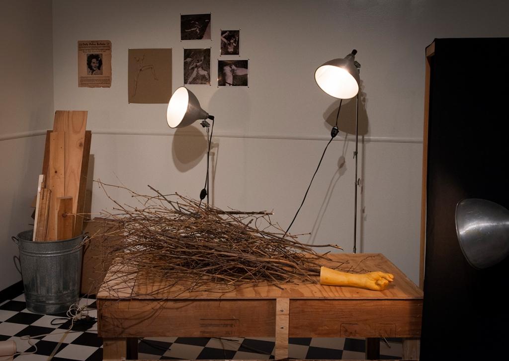 Natascha Niederstrass, Installation view, Gallery 101, Ottawa.