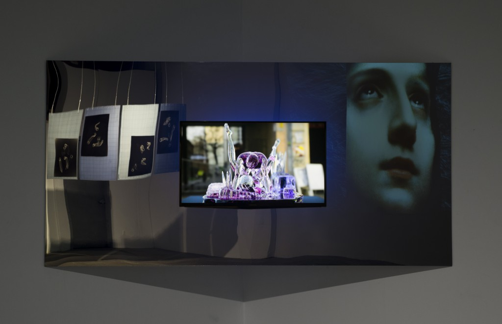 Mark Soo: Koons On Ice (2015). Digital video installation, sound, plexiglass, 4 min 11 sec. Ed 2/5 + IIIAP