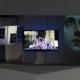 Mark Soo: Koons On Ice (2015). Digital video installation, sound, plexiglass, 4 min 11 sec. Ed 2/5 + IIIAP