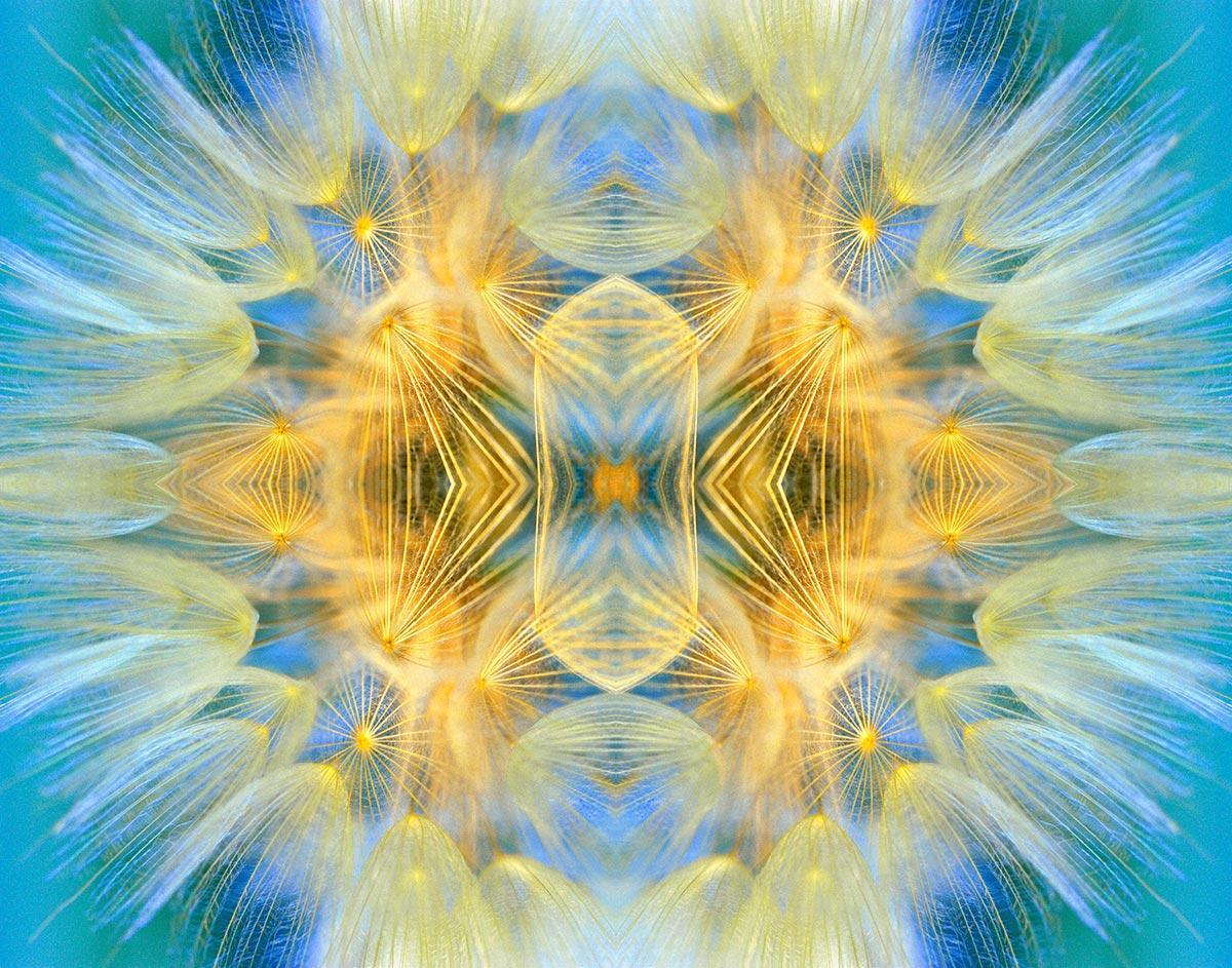 Cosmic Candelabrum by Philomena O'Dea