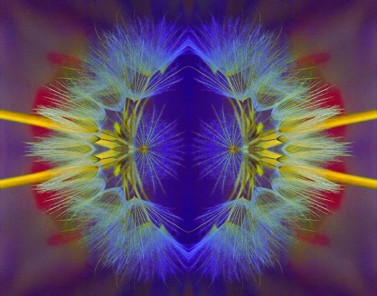 Cosmic Eye by Philomena O'Dea