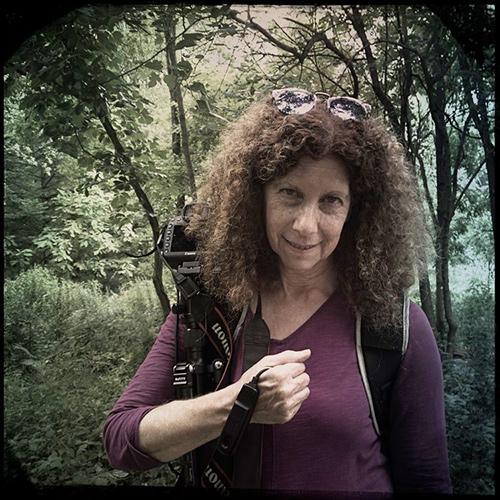 Sue Abramson