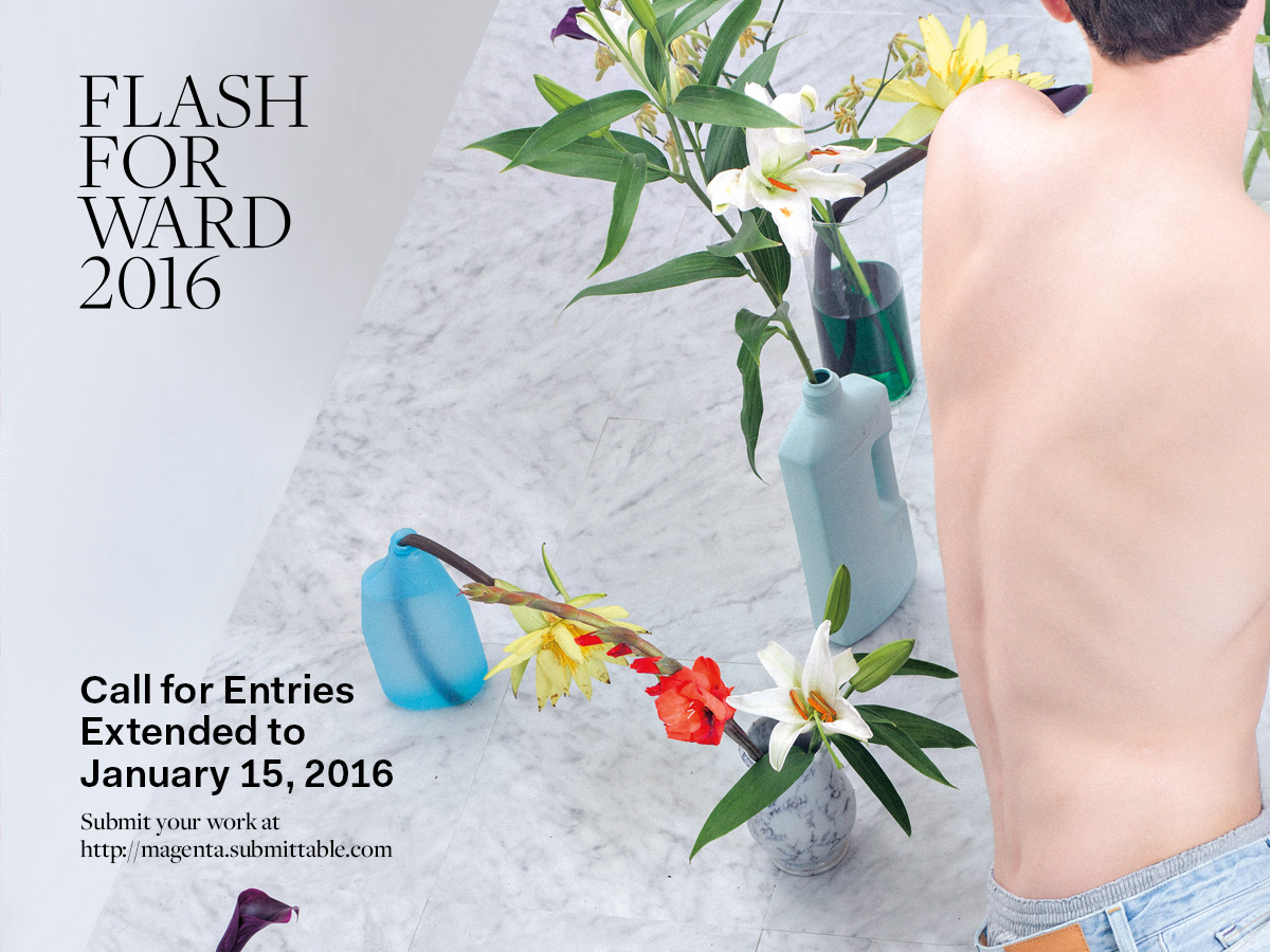 FF2016-CallforSubmissions-Extended-03