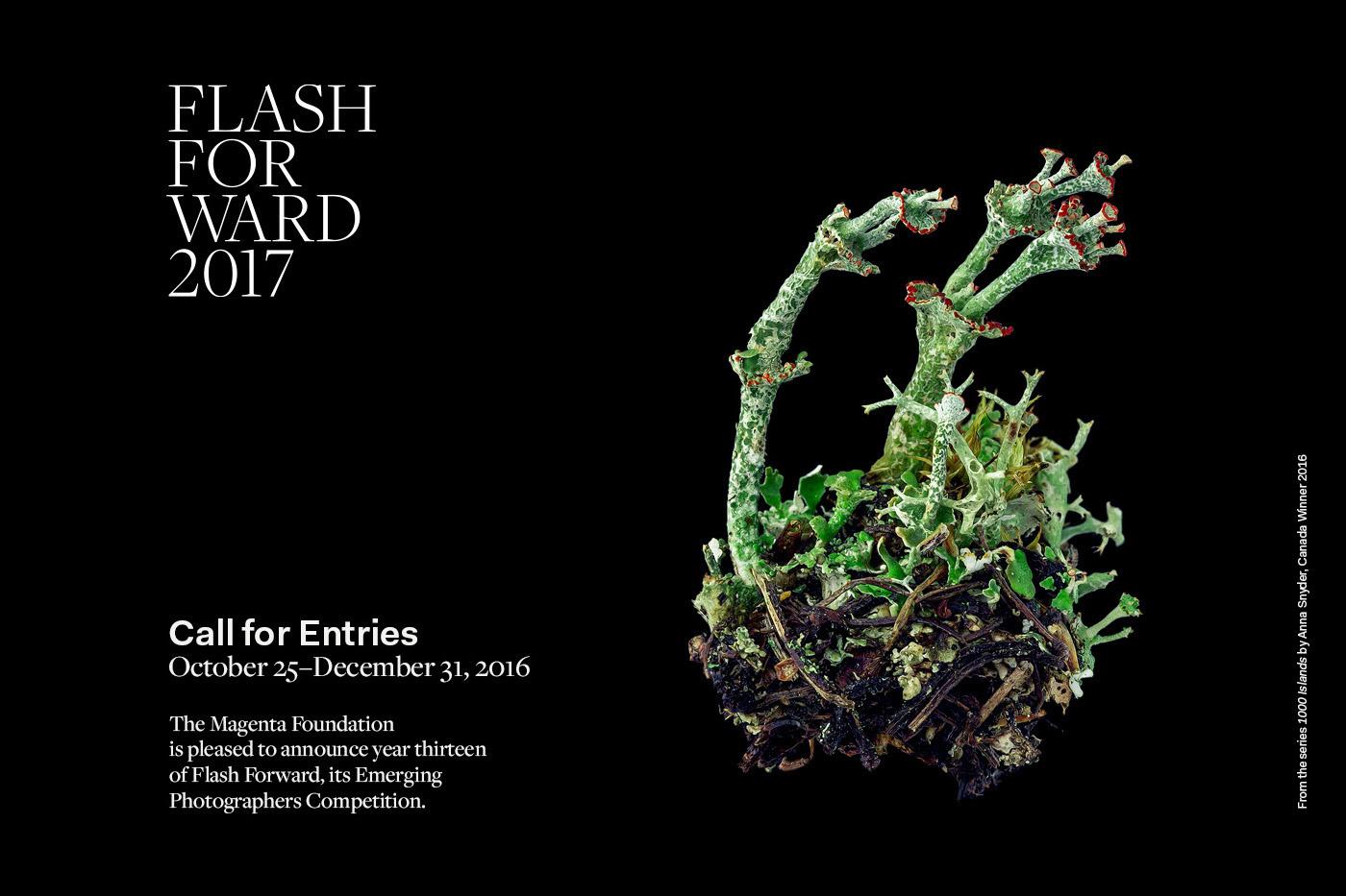 flashforward2017-callforsubmissions-promo