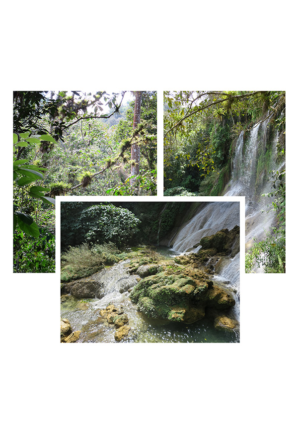 The Waterfalls of Cuba by Aidan Park (Buckingham Browne & Nichols)