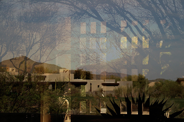 Nature Reflection by Isabelle Hoffman (Pingree School)