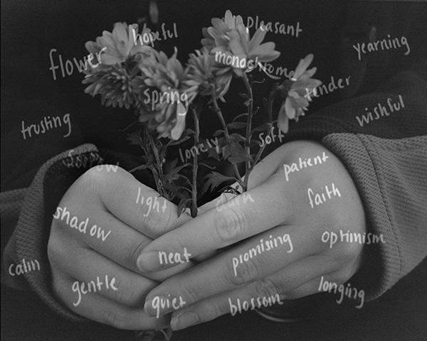 Undertones of Hope by Samira Ibrahim (Thayer Academy)